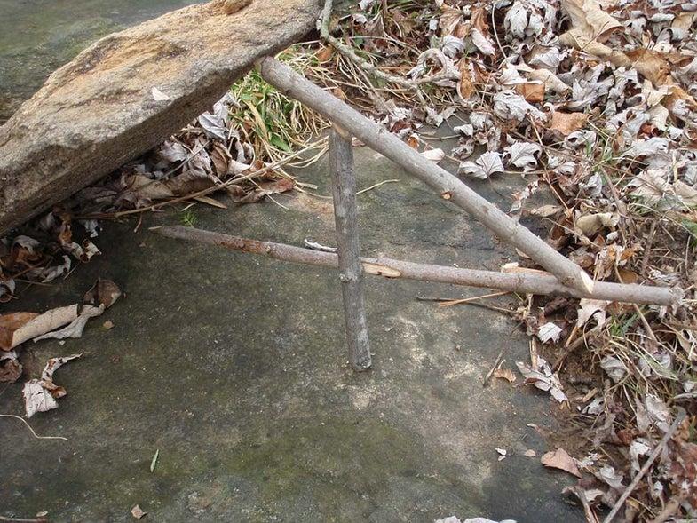 a paiute deadfall trap