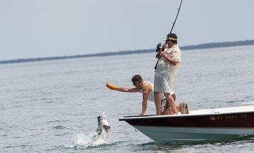 Taking Down the King: DIY Tarpon Fishing