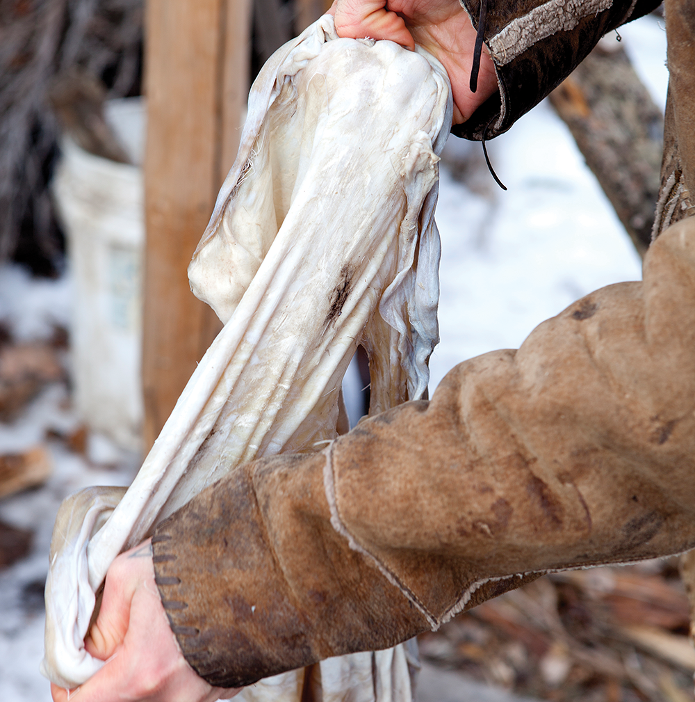 Put the skin in a tub containing the solution and massage the hide by hand.