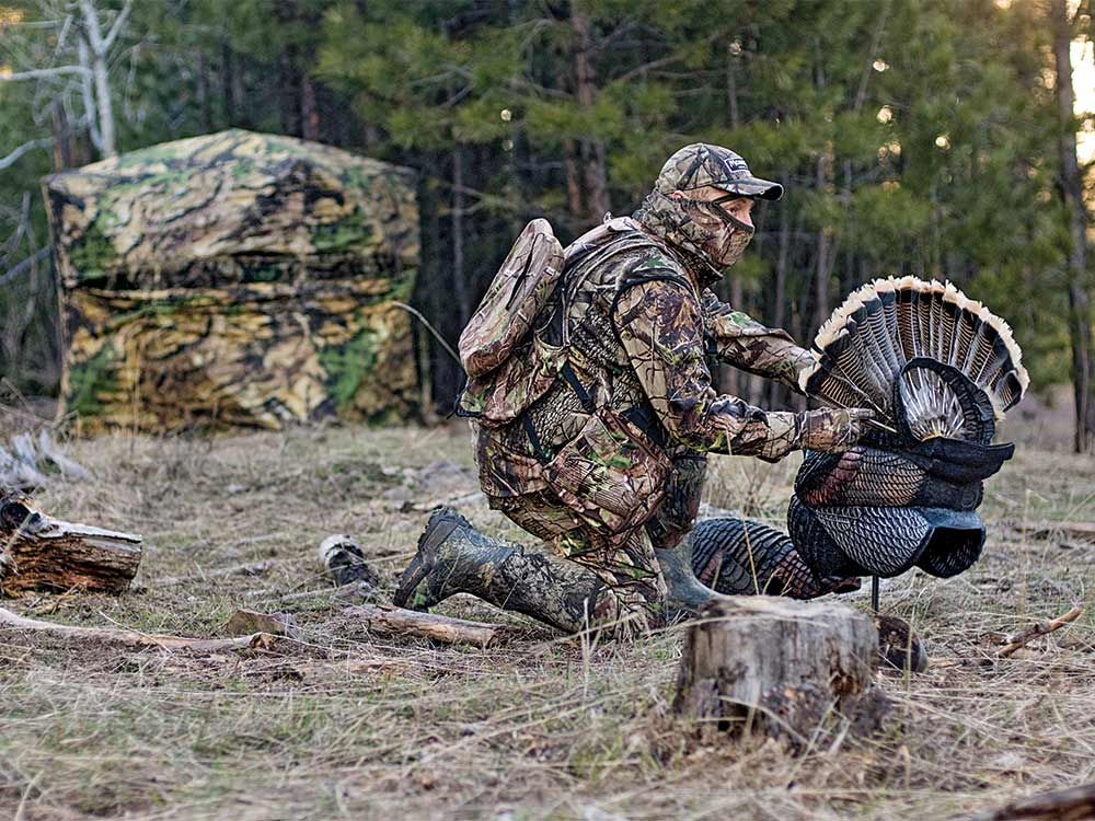 turkey hunter setting up decoys
