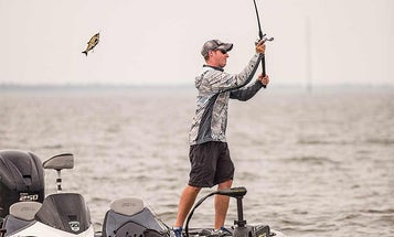 Swimbaits for Bass: Build the Right Rig on Any Budget