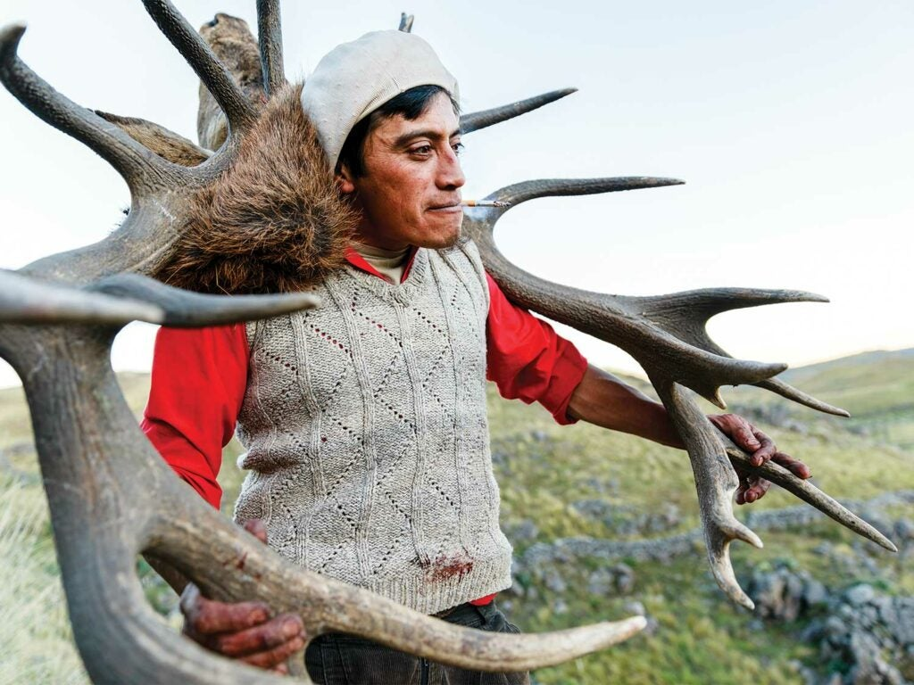pascual yancanqueo holding giant stag antlers over his shoulders
