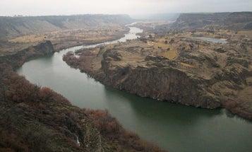 Snake River Dam Removal: Idaho Congressman Makes the Case to Save Salmon