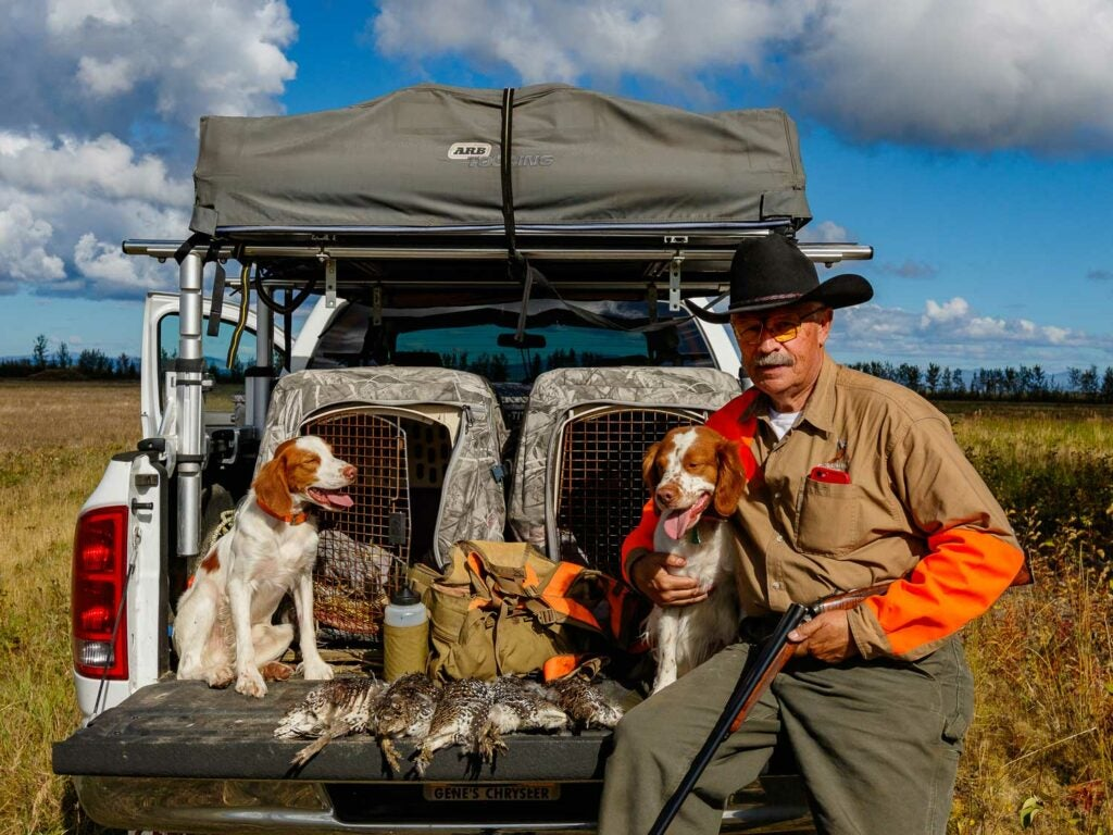 man and dog on truck bed after hunting quail