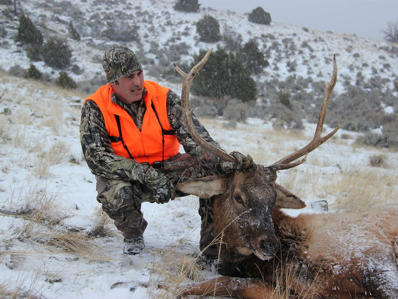 hunter kneeling next to large elk