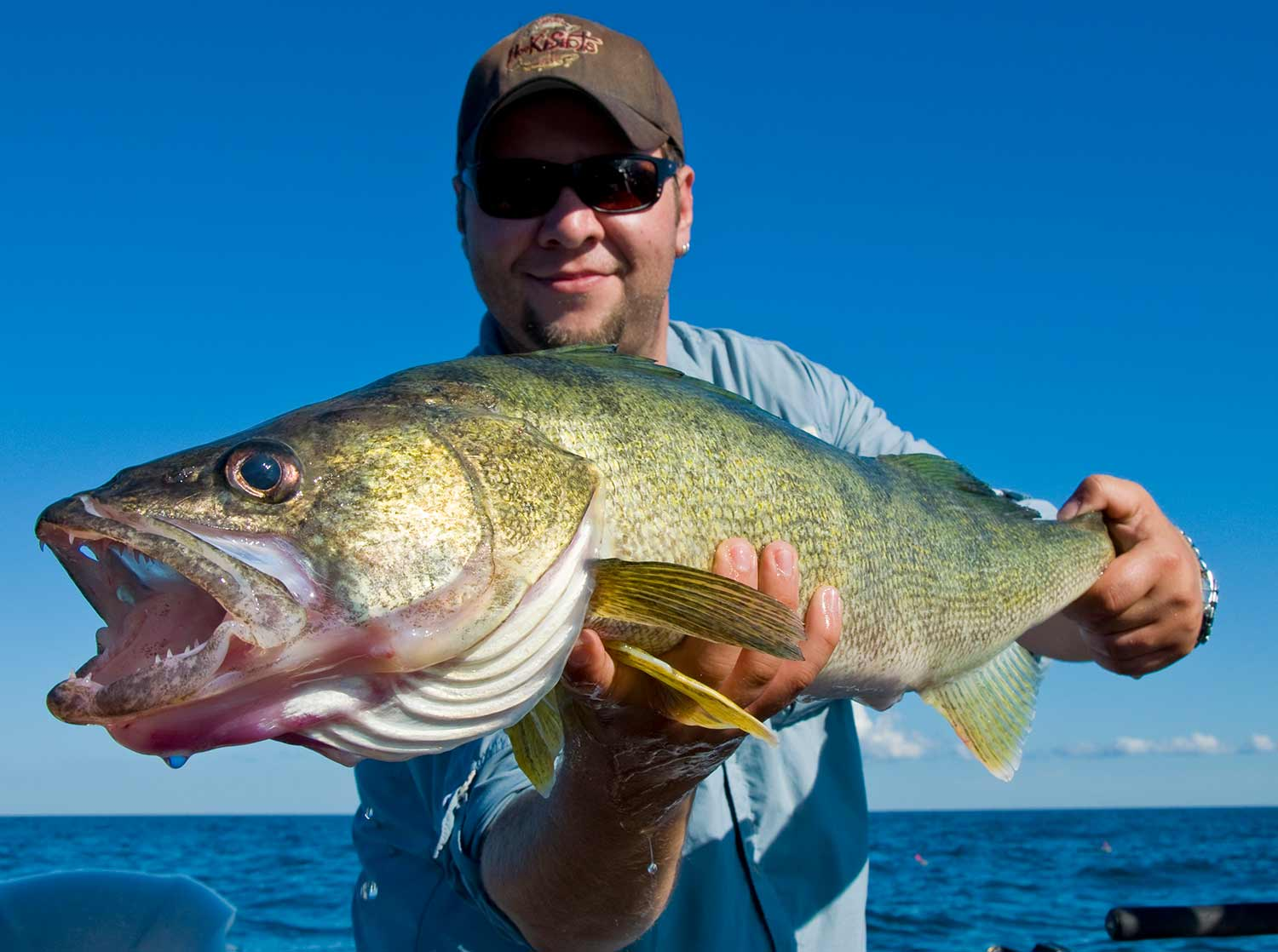 The 15 Best Walleye Jigs and Lures (& How to Use Them)
