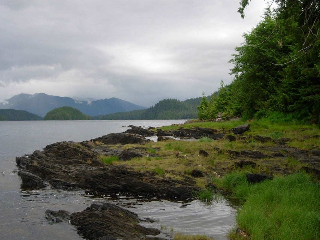 Roadless Area Rules Could Be Rolled Back in Tongass National Forest