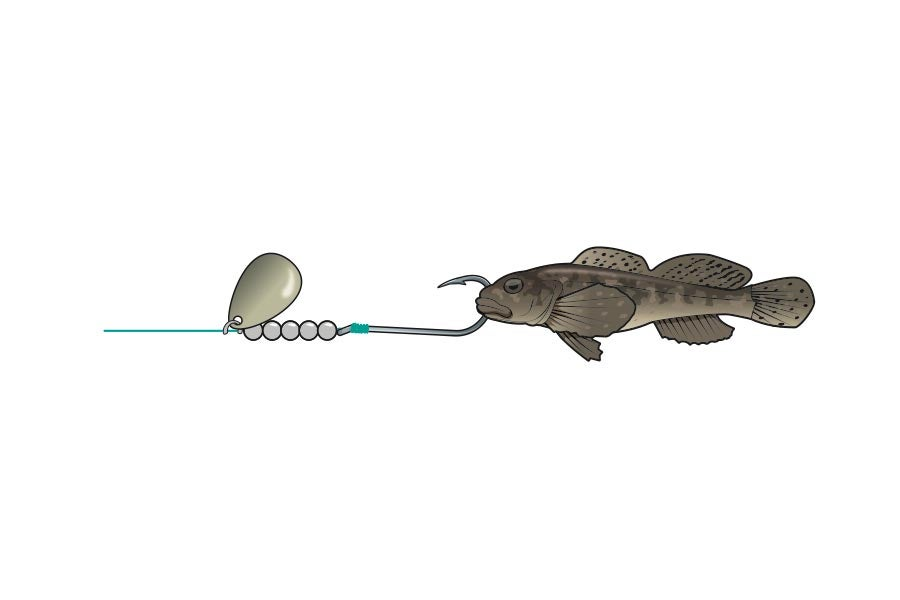 Spinner And Sculpin Minnow bait fishing rig