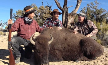 A Once-in-a-Lifetime Hunt for Bison in Utah's Henry Mountains