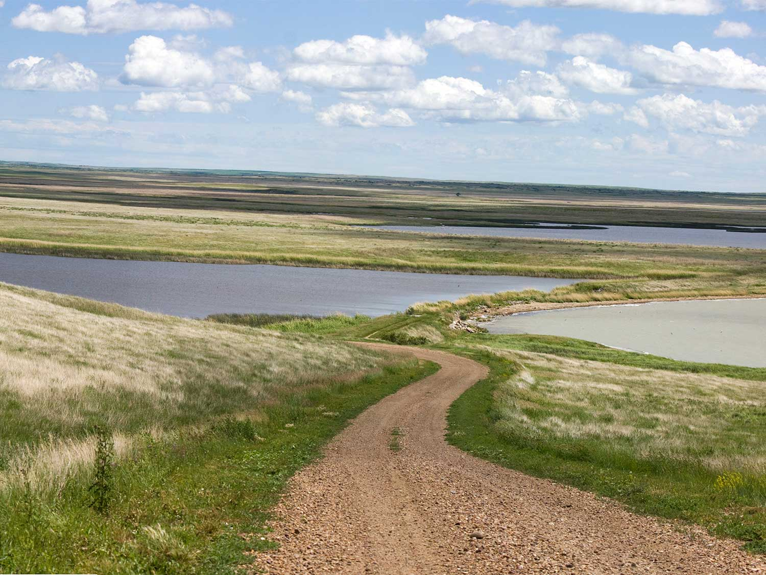 Federal Proposal Would Open Hunting and Fishing Opportunities in National Wildlife Refuges