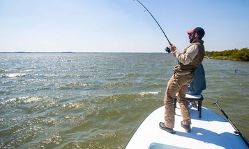 Florida's Water Crisis Has Sport Fishing on the Brink of Collapse