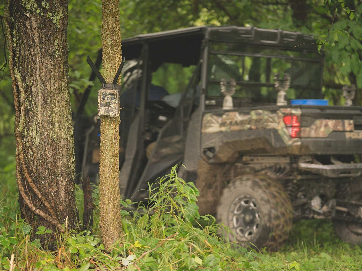 5 Tips for Getting Better Trail Camera Pictures