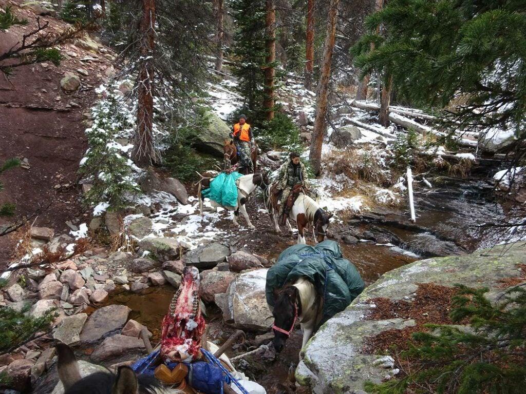 hunters on horseback on a backcountry trail