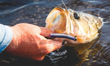 9 Bass Lures That Sell the Fastest