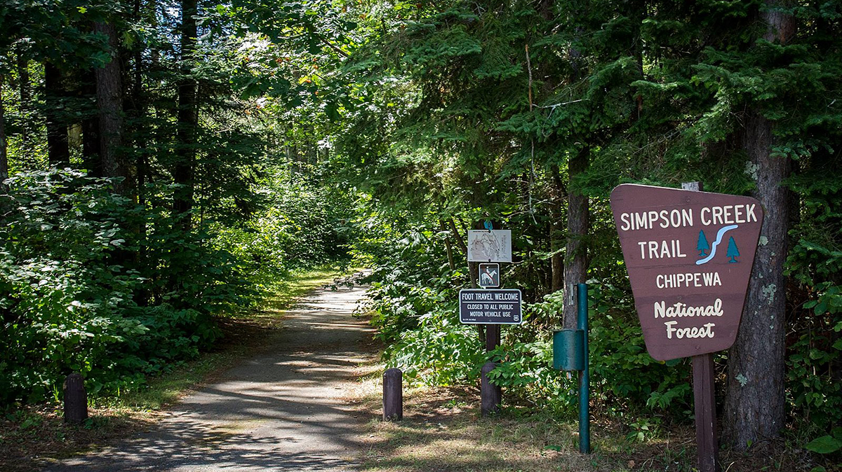 Make Forest Service Lands Great Again