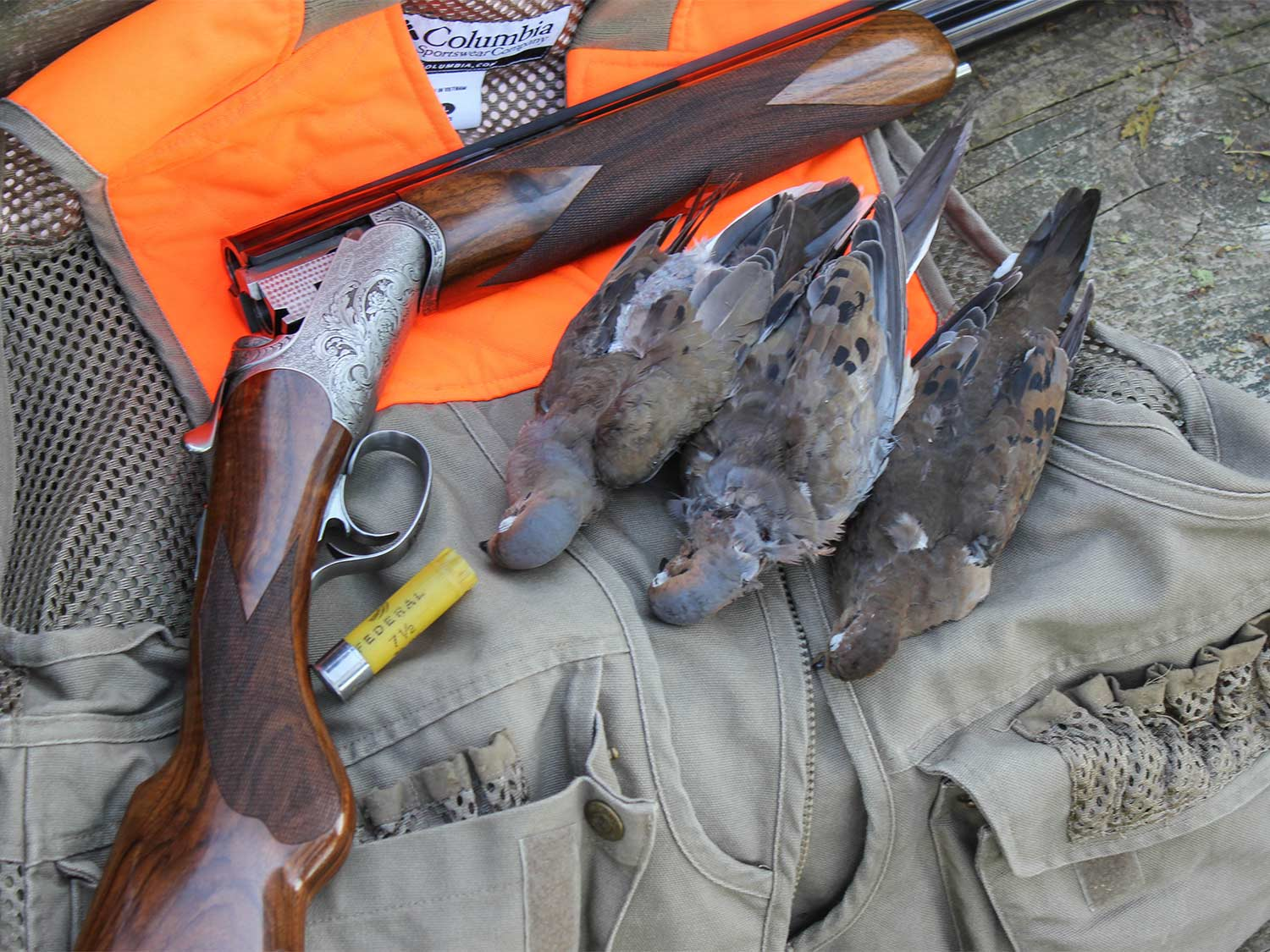 10 Tips To Shoot More Doves This Season