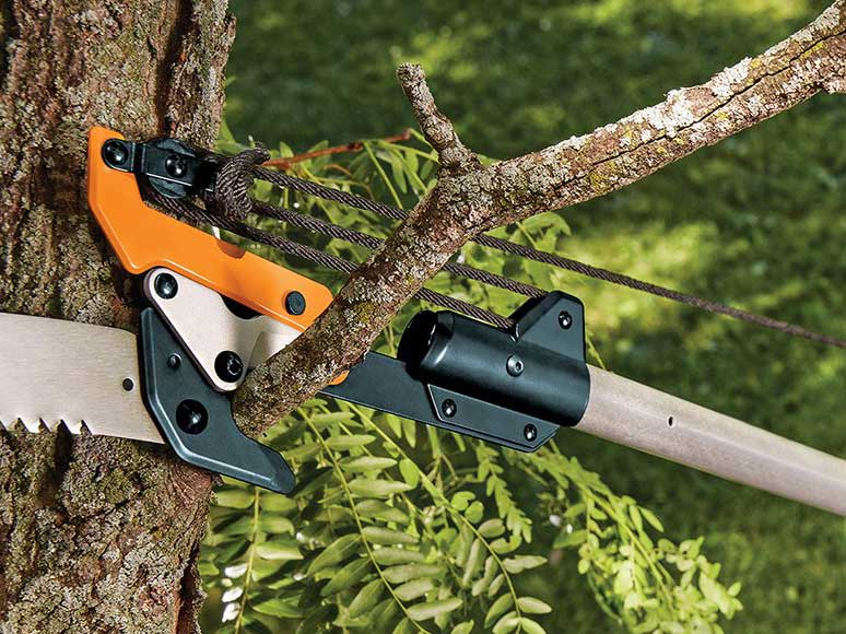3 Things to Look for in a Telescoping Pole Saw