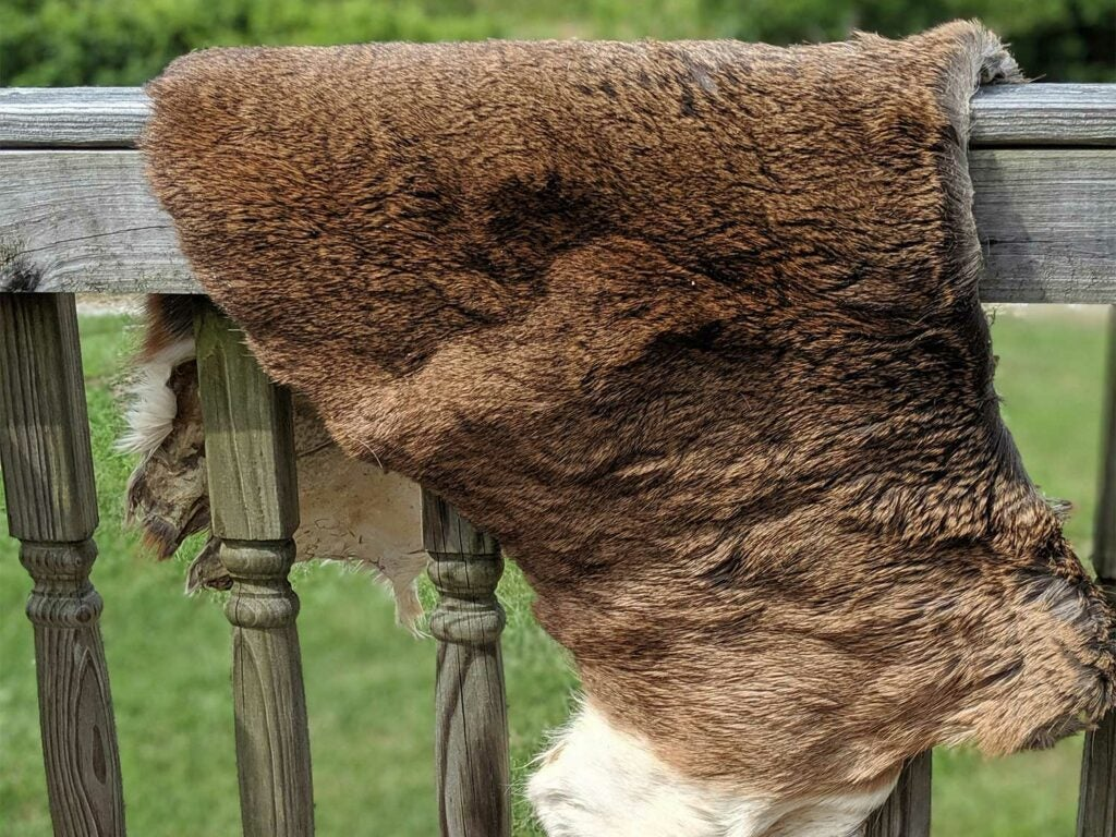 a deer hide on a wooden railing