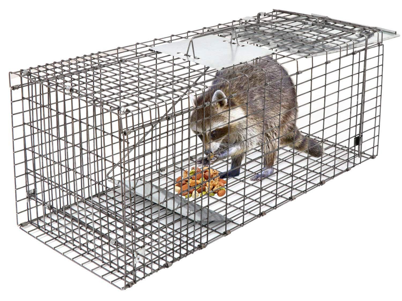 HomGarden Live Animal Trap