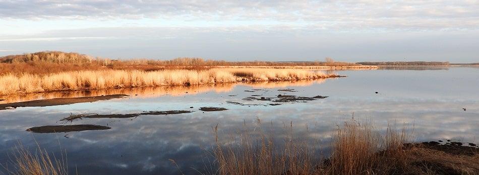 wildlife refuges bernhardt