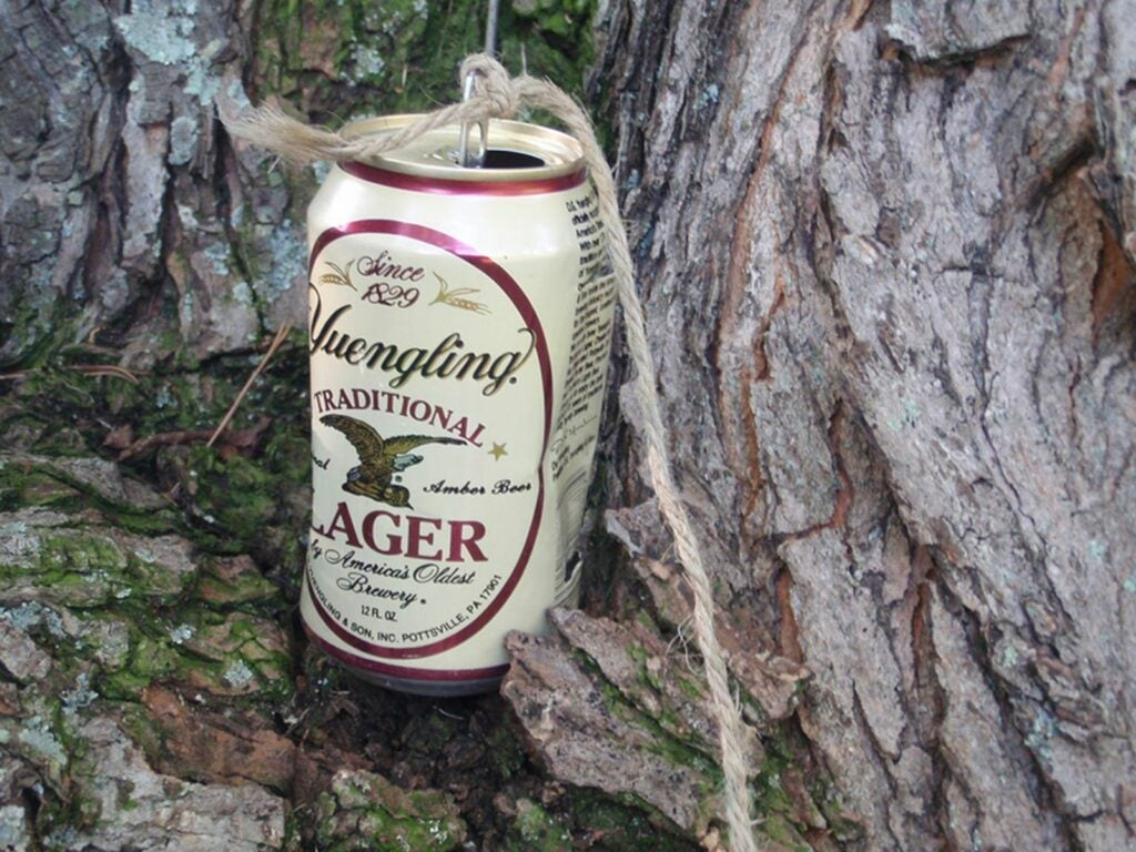 A can filled with rocks tied to a string, hanging from a tree.