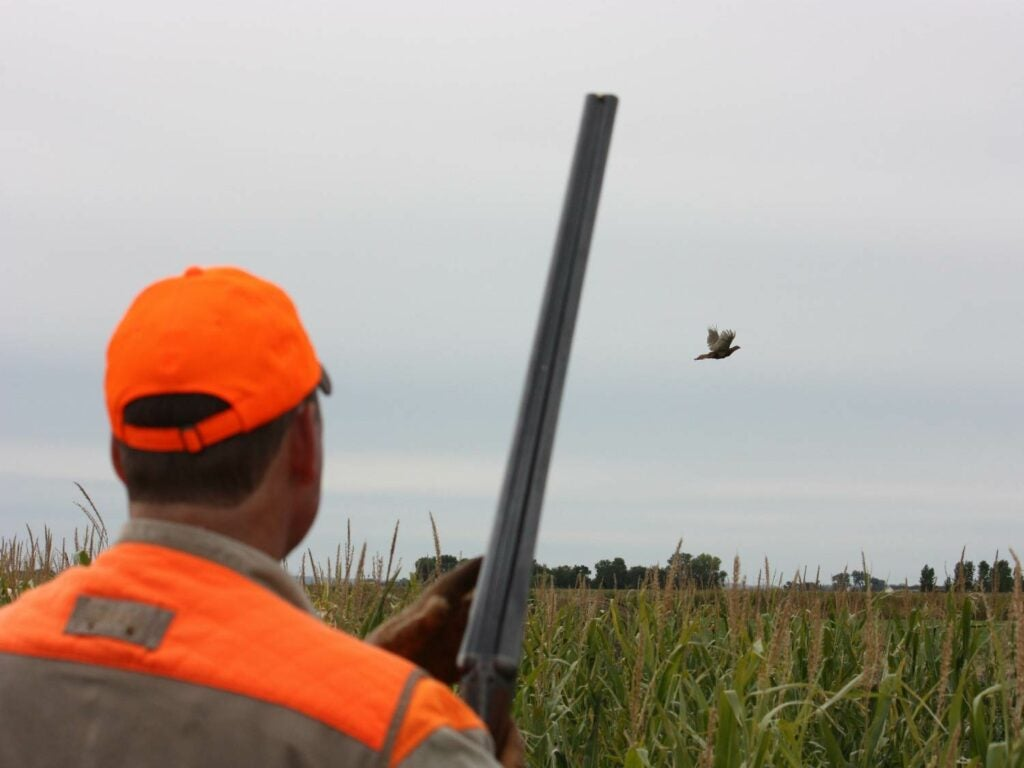 hunter holding shotgun in a field
