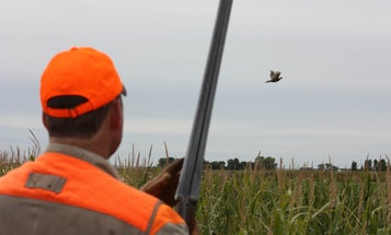 12 Ways to Improve your Wingshooting Skills