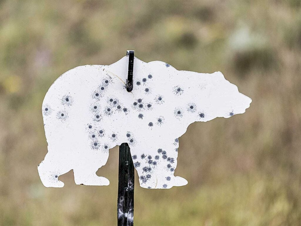 rimfire grizzly target groups