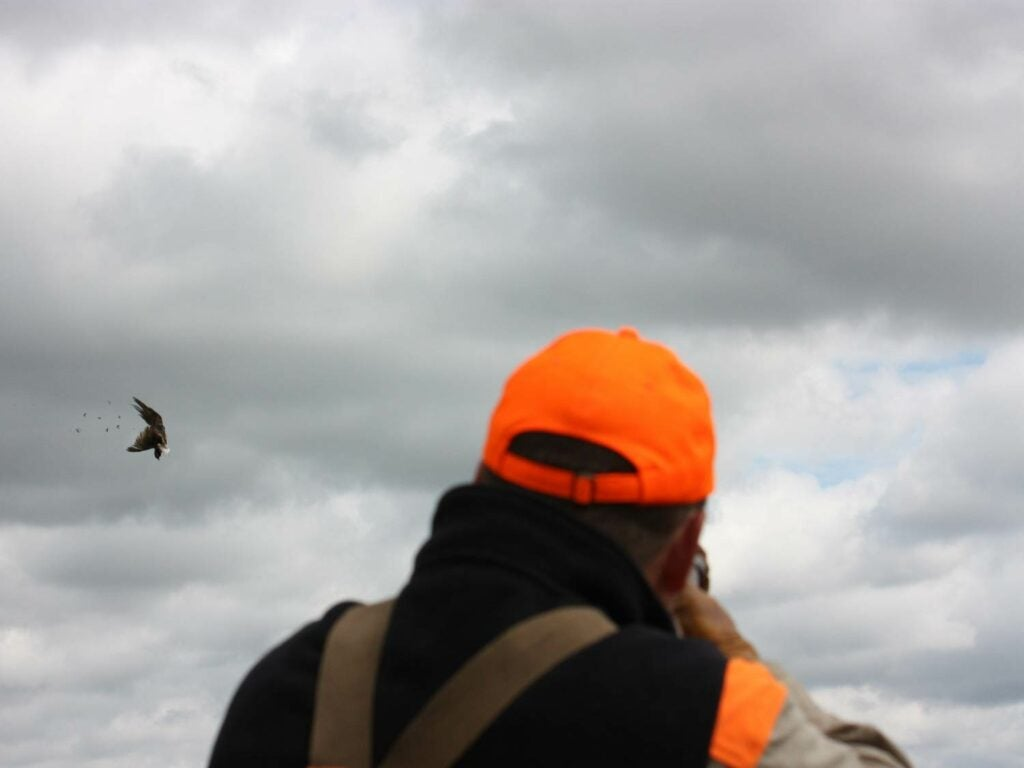 hunter aiming a shotgun at a bird