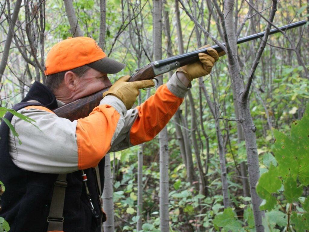 hunter aiming shotgun in the woods