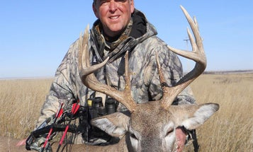 5-Step Plan to Shoot a Big Buck on the Bow Opener