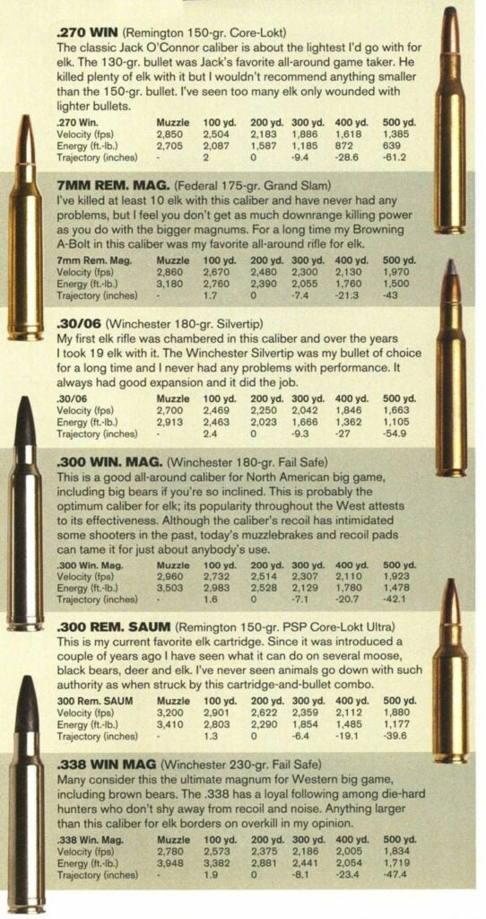 Why are these cartridges good elk rounds?
