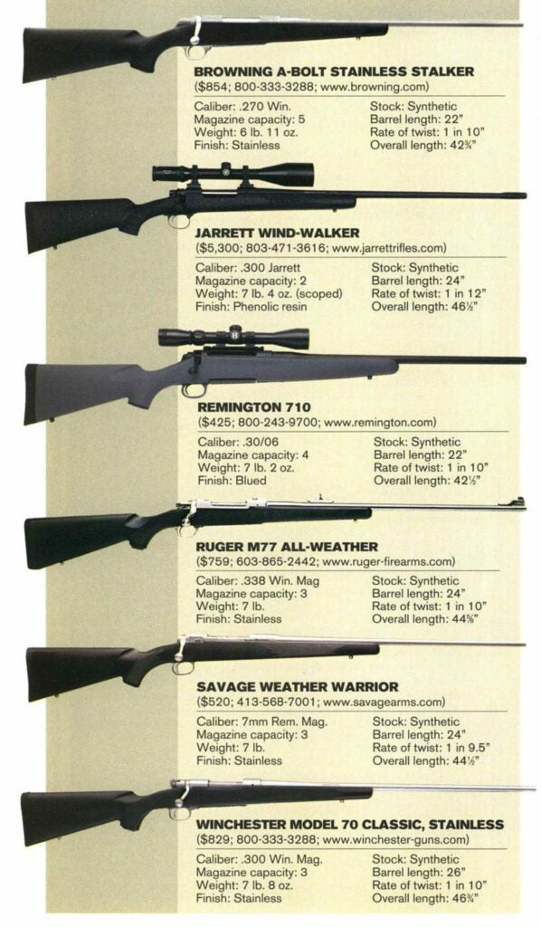 Different choices for the perfect elk rifle.