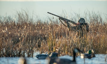What Makes Specialized Waterfowl Shotguns So Special