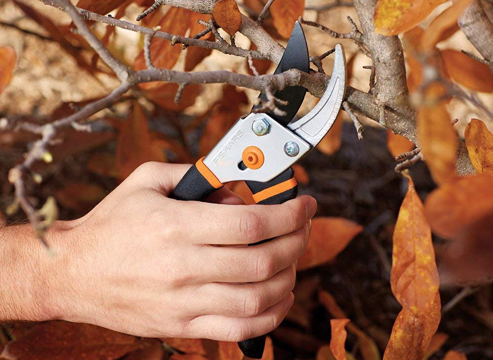 3 Reasons to Carry Hand Pruners in The Field