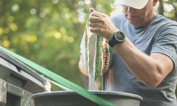 4 Reasons Why Your Clover Food Plot Crashed