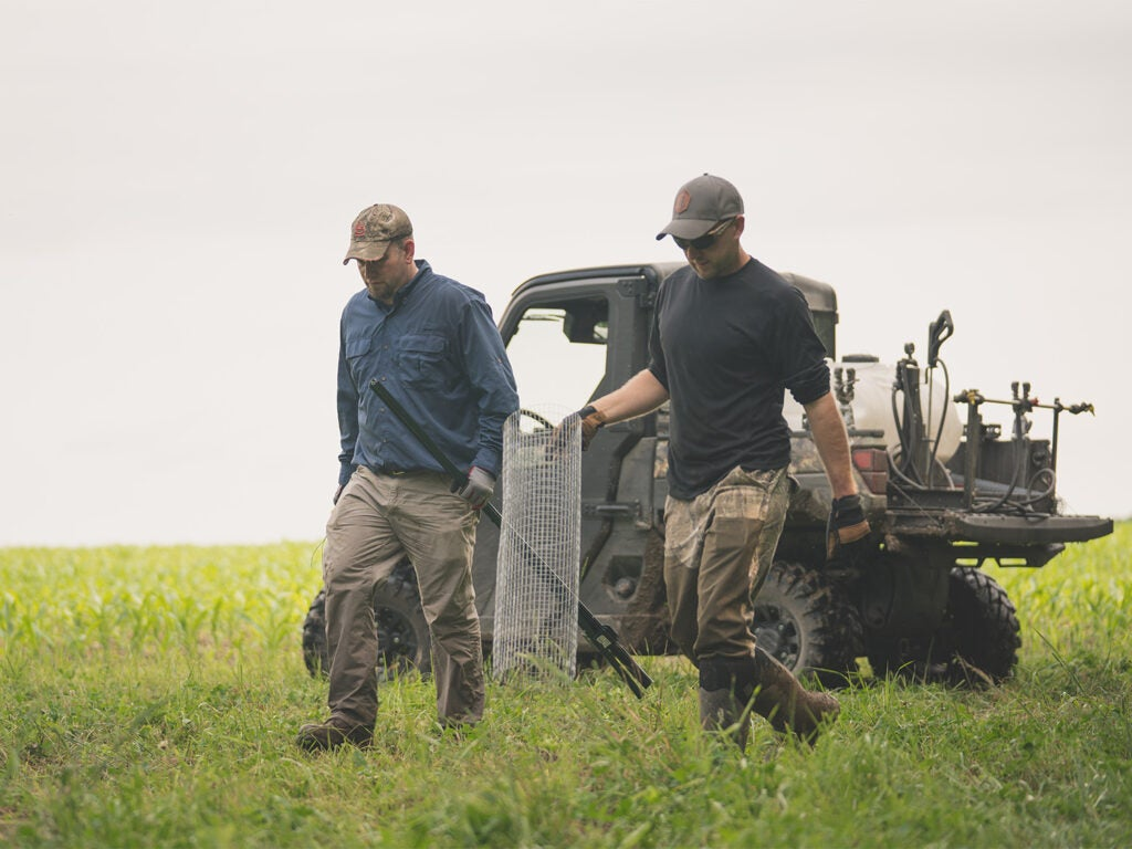 hunters carrying wire frames in a clover field