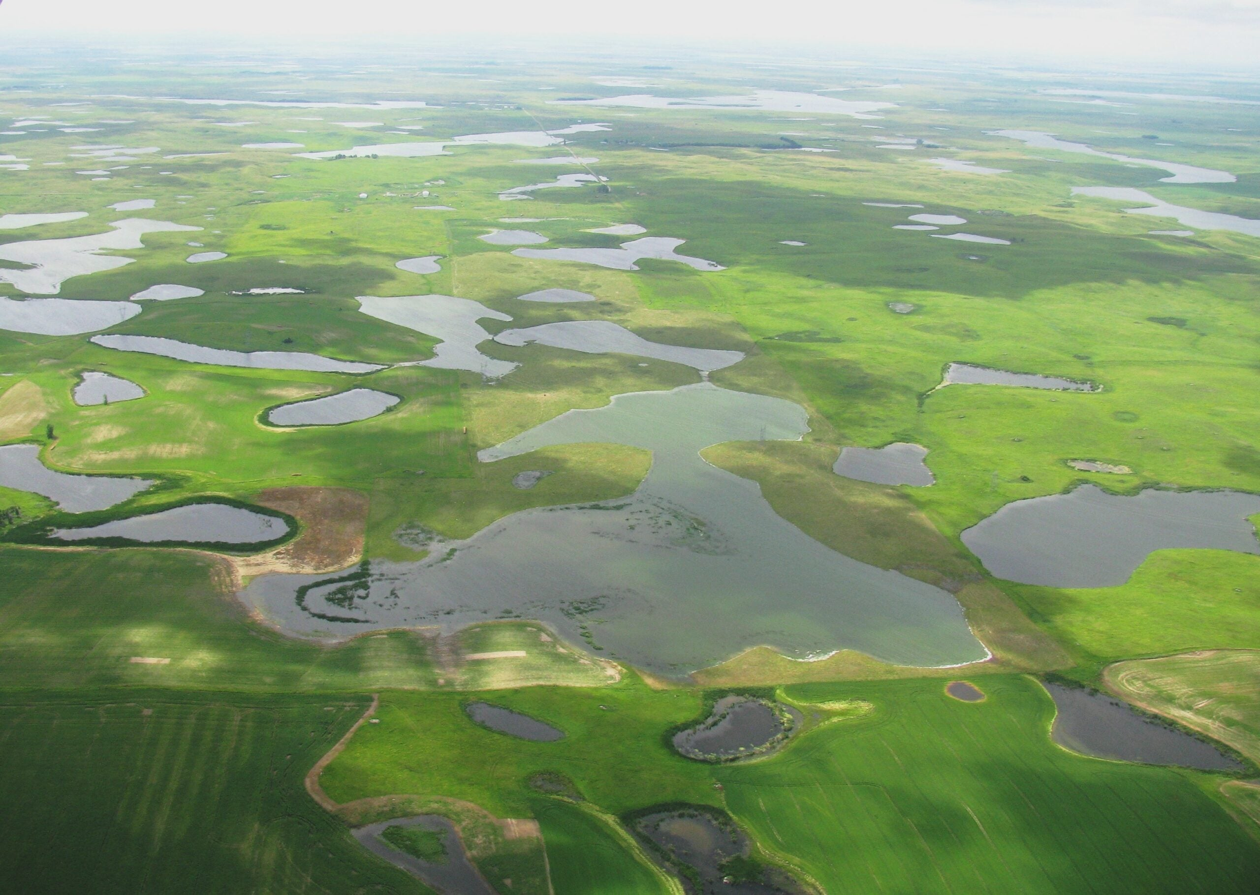 EPA Removes Water Protections and Rolls Back 2015 WOTUS Rule