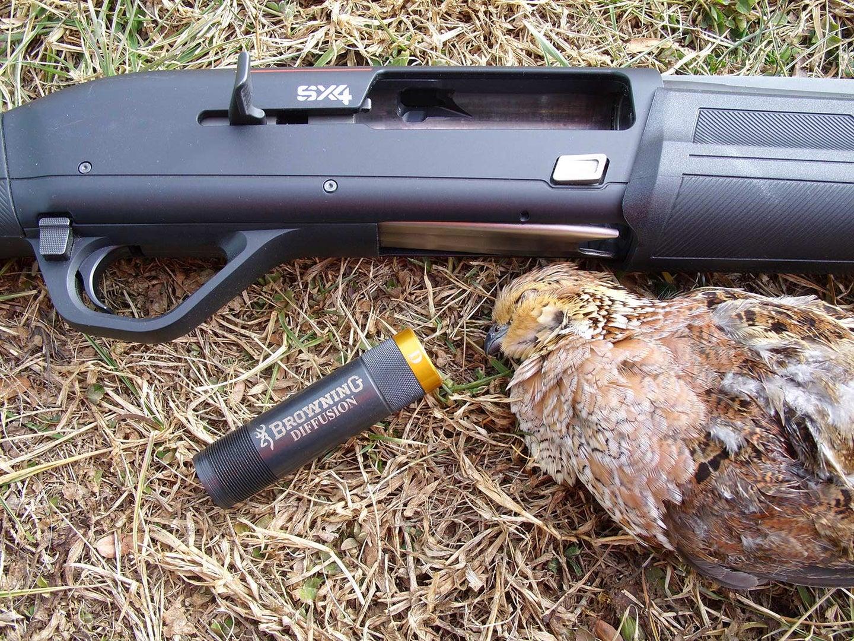 a shotgun choke and quail hunting
