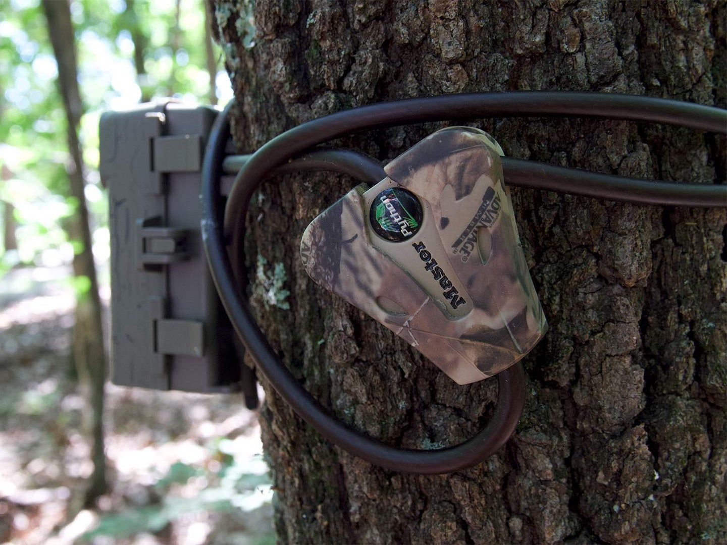 7 Hacks to Keep Your Trail Cams From Getting Stolen