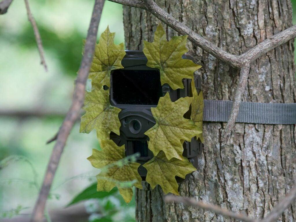 camoflage trail camera
