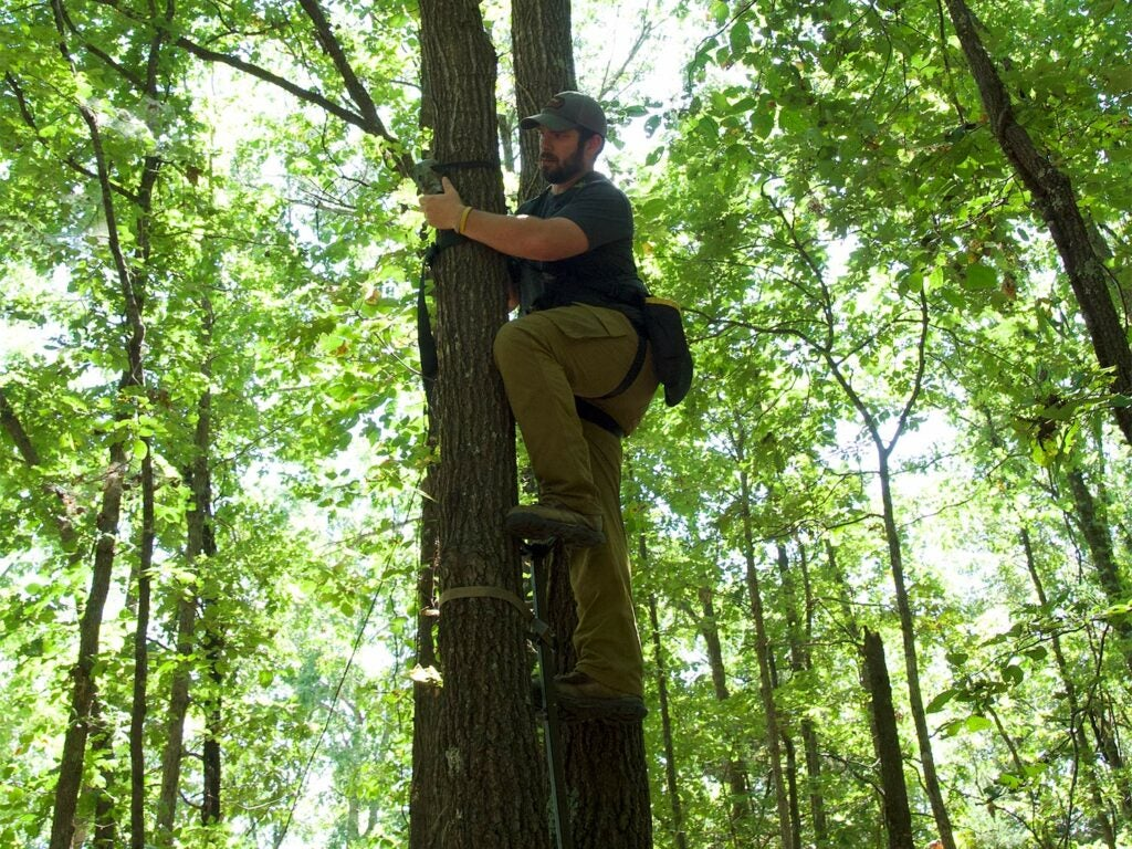 hunter hanging a trail camera high up a tree