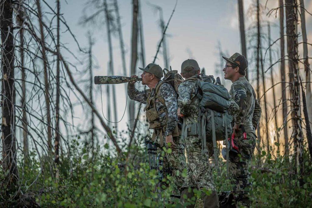 hunters walking through the woods while calling elk