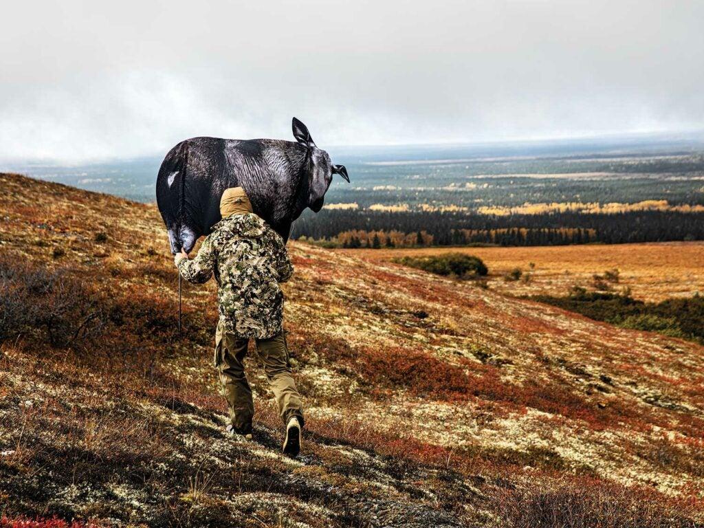 hunter setting up elk decoys on an alaskan hillside