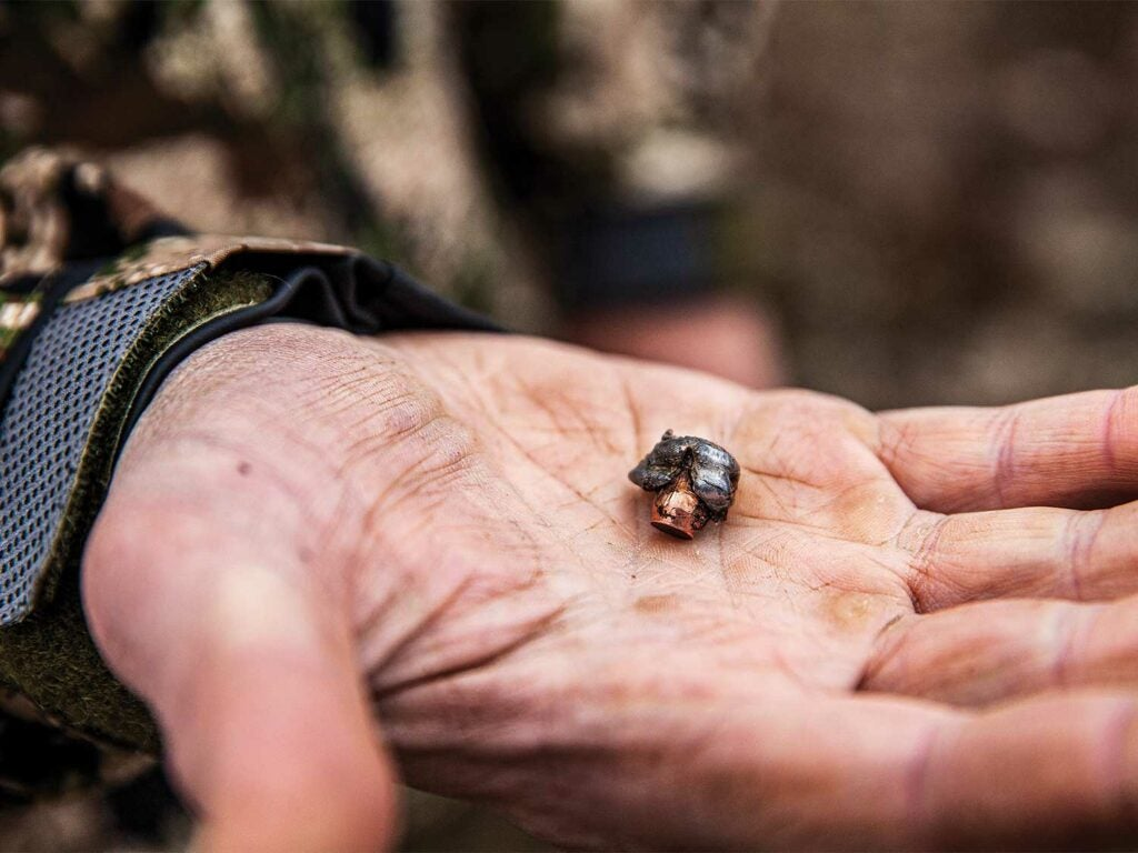a spent bullet in a hand