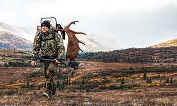 Hunting Bull Moose in the Alaska High Country