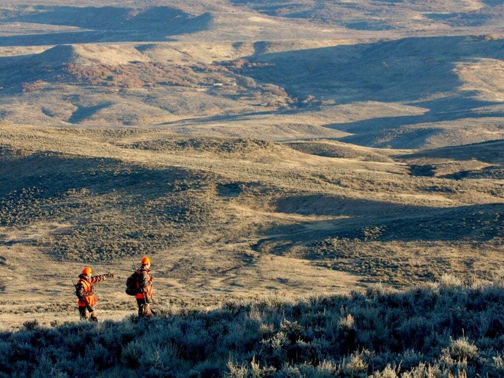 Hunters walking across a hillside