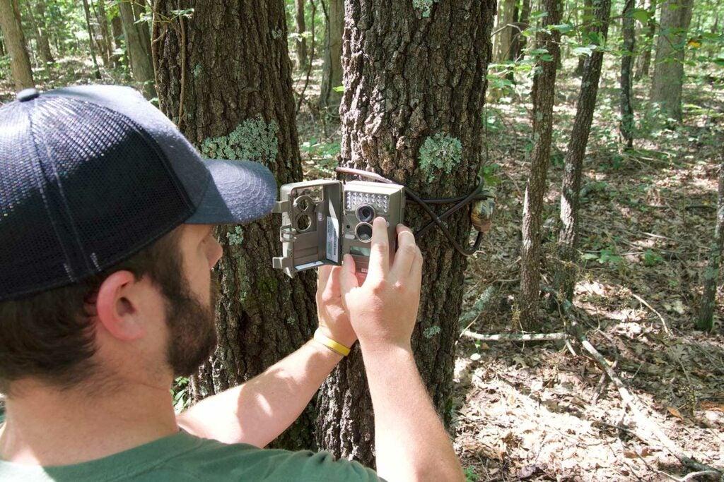 hunter hanging a trail camera