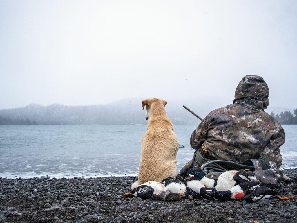 dog and hunter sitting on alaska shoreline