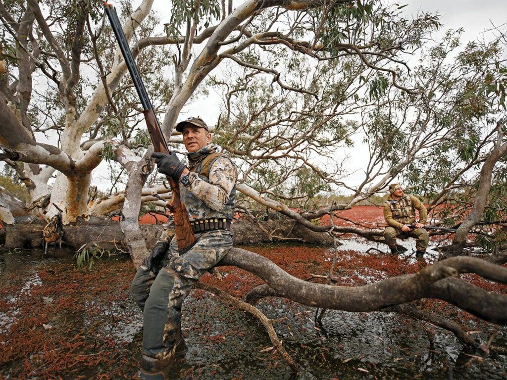 hunter sitting on tree branch in red gum swamp
